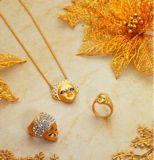 [100و&200و] [يغ] [هي برسسون] مجوهرات بقعة [لسر ولدينغ مشن] لأنّ نوع ذهب فضة مجوهرات