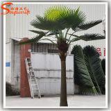 Giardino che modific il terrenoare la palma artificiale