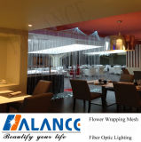 Fiber ottico Waterfall Curtain per Door Decoration (FWF-003)