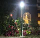 LED Street Light mit 12V Solar 30W