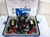 Slim BallastのDC 24V 55W H13 HID Lamp