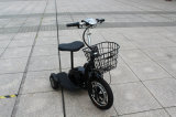Im FreienElderly Electric Tricycle für Disabled
