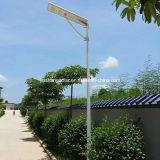L'alta qualità 30W economizzatore d'energia ha integrato tutti in un indicatore luminoso di via solare del LED
