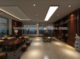 Luz del panel del precio de fábrica IP44 1200*300m m 0-10V Dimmable LED