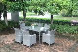 屋外の藤の表および椅子
