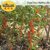 Ягода органическое Wolfberry Goji мушмулы красная высушенная