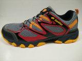 4 يصمّم ألوان [لتست] رجال سار حذاء رياضة