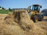 Nuevo Pinzas Bucket Maquinaria Agrícola con Rops y FOPS