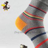 Популярная таможня Stripes носки хлопка человека