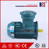 3 Explosiebestendige AC van de Inductie van de fase Elektrische (Elektro) Motor met de Draad van het Koper