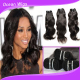 Modo Style 8A Peruvian 100% Virgin Hair Top Quality Unprocessed Peruvian Human Hair Body Wave Human Hair