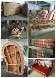 Sofà di cuoio con il tavolino da salotto (830)