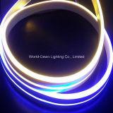 2 년을%s 가진 높은 광도 두 배 측 점화 LED 네온 코드 보장 (WD220-DS2W-2835-120L-NFL)