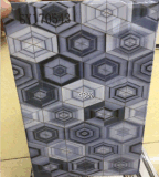da forma nova do projeto de 200X300mm telhas cerâmicas da parede