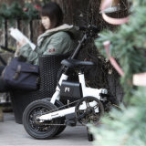최고 질 Foldable 소형 전기 자전거 F1