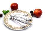 Jeu réglé de déjeuner de vaisselle plate internationale réutilisable bon marché d'acier inoxydable