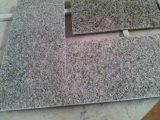 Granit jaune pour le jaune de Partie supérieure du comptoir-Guindineau