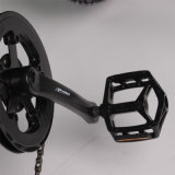 Bicicletta elettrica della montagna grassa della gomma del fornitore 1000W 48V