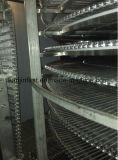 Congelatore di spirale IQF del doppio dei frutti di mare di alta qualità