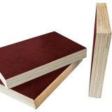 El precio bajo imprimió la madera contrachapada hecha frente película del álamo de Brown