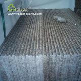 Possedere il Bullnose della fabbrica G687/ha facilitato le scale delle mattonelle del granito del bordo per dell'interno