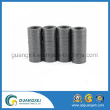 Ferrit-Magnet-direktes Zubehör der Qualitäts-Y30 von China