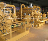 Générateur de biomasse d'interpréteur de commandes interactif de grain de paume de la CE pour le groupe électrogène