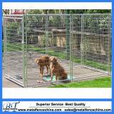 Jaula bloqueable fuerte del perro del acceso de la jaula resistente del perro