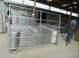 Гальванизированная американским стандартом стальная панель скотин/панель поголовья/панель лошади/используемая панель Corral