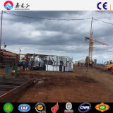 Мастерская стальной структуры/здание стальной структуры (SSW-168)