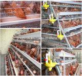 Machine automatique d'enlèvement d'engrais d'usine de cage de poulet
