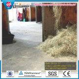 rubberMatwerk van de Landbouw van de Mat van het Matwerk van het Paard van de Koe van de Dikte van 17mm het Antislip Rubber Stabiele