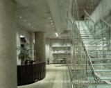Glace colorée durcie Tempered stratifiée pour des escaliers