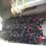 Cowpeaの黒豆のポリッシャ