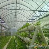 A película plástica para a estufa montou facilmente usado para o jardim e a área de lazer *
