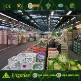 Costruzione moderna prefabbricata chiara del supermercato