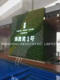 Parete artificiale della pianta verde di marchio di simulazione con l'indicatore luminoso del LED