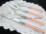 Vajilla plástico de los platos y cubiertos de la cuchillería del acero inoxidable de la maneta