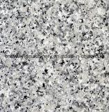 Пластичная линия изготавливания PVC мраморный каменная для украшения панели стены