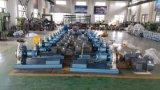 China-berühmte chemische Standardschleuderpumpe