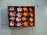 로터스의 인공적인 플랜트 그리고 꽃 10cm 구 Jys 0004