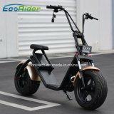 Ecorider 판매를 위한 전기 Harley 스쿠터 1200W 무브러시 모터