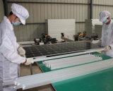 preiswerter polykristalliner photo-voltaischer Sonnenkollektor der Sonnenenergie-250W
