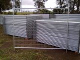 As4687-2007 Temporary Fence com Highquality