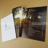 費用有効カタログの印刷の小冊子のパンフレットの印刷