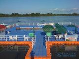 Embarcadero de flotación del precio competitivo