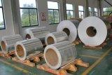 Vendita calda diretta PCT termica della fabbrica di qualità dell'esportazione