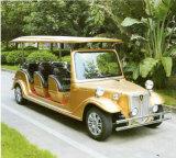 Таможня красит 8 электрических классицистических гостей автомобиля