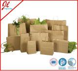 sacs solides de cadeau de Brown Papier d'emballage de sacs en papier de 2pk Eco Papier d'emballage avec le traitement tordu par jaune