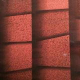 Ladrillo revestido PPGI del trapezoide del color de la calidad de Hight en bobina